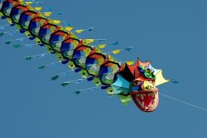 yann-pelcat-cerfs-volants-2012-691
